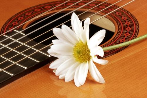 Хранение гитары
